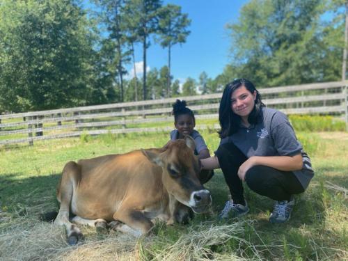 Aiyanna-and-Arlene-cow-1024x768